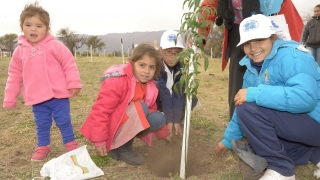 Balance Cero: más de 149.206 árboles plantados en toda la provincia