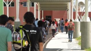 Curso de ingreso 2015: la vida universitaria en acción