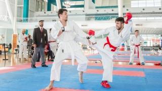 """El Campus ULP fue escenario del 7º Torneo de Karate """"Ciudad de La Punta"""""""