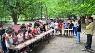 Ajedrez: las piezas continúan en movimiento durante el verano