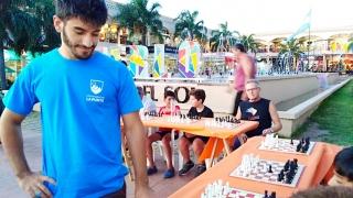 Un maestro de ajedrez desafió a 15 merlinos en una simultánea