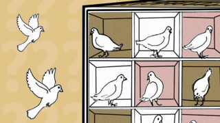 El problema del palomar